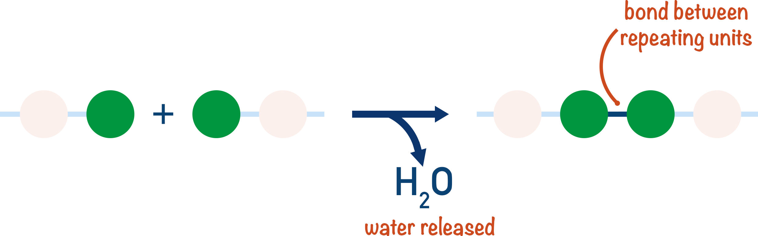 condensation polymerisation water release