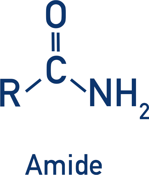 functional group amide structure