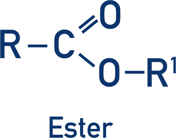 functional group ester structure