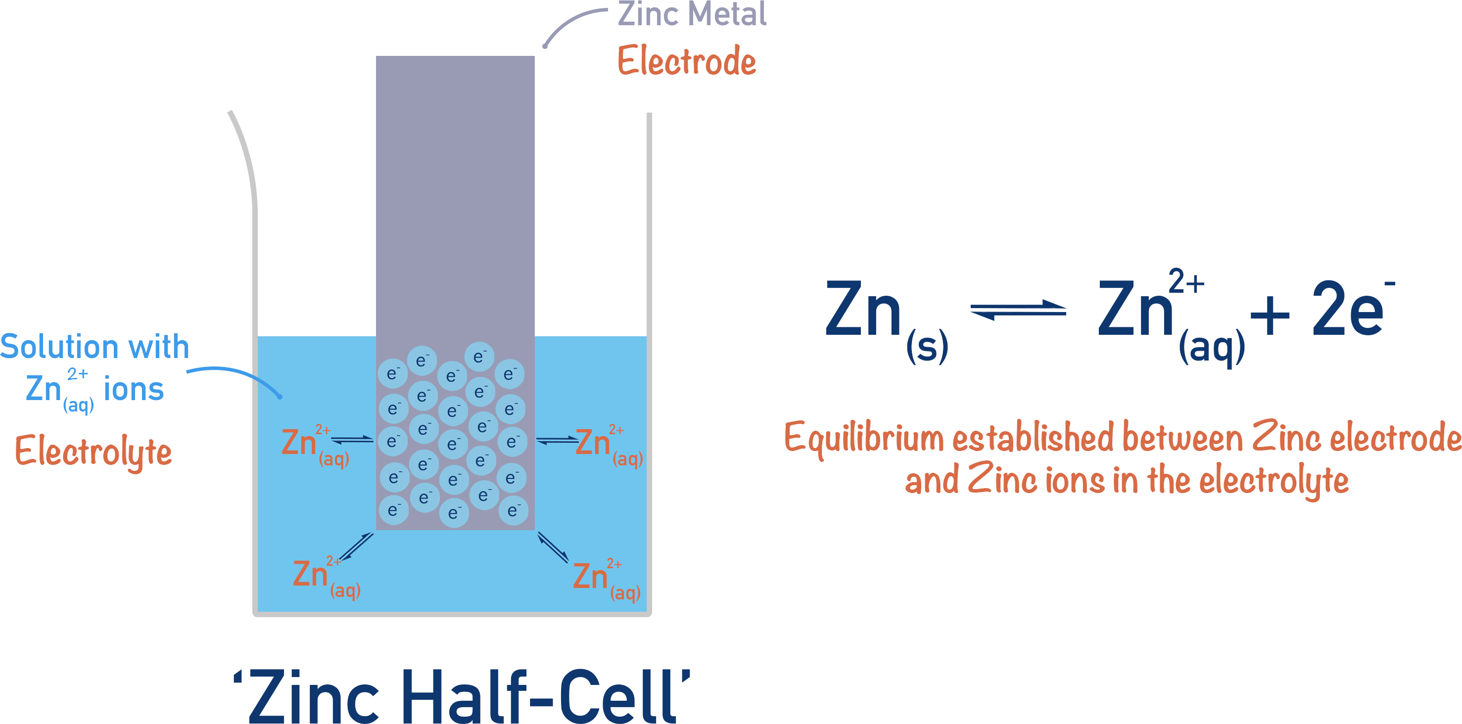 zinc half cell electrochemistry oxidation reduction equilibrium electrode potential a-level chemistry