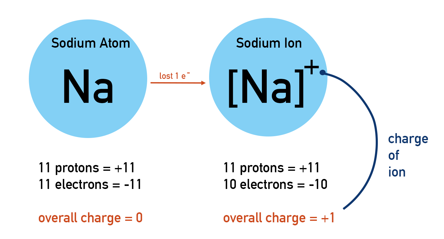 Formation of positively charged sodium ion