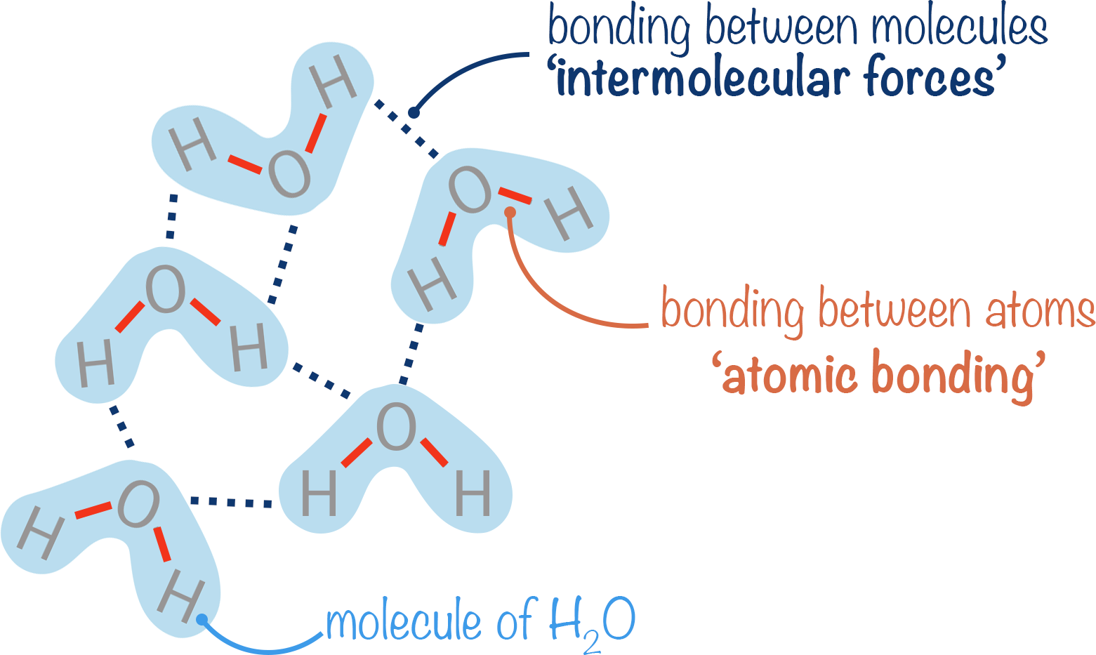 intermolecular forces and atomic bonding within water